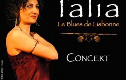 2013 - Affiche pour Valence Agglo